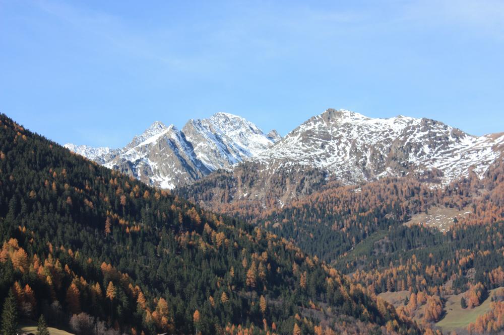 Image Gradenbach Landslide