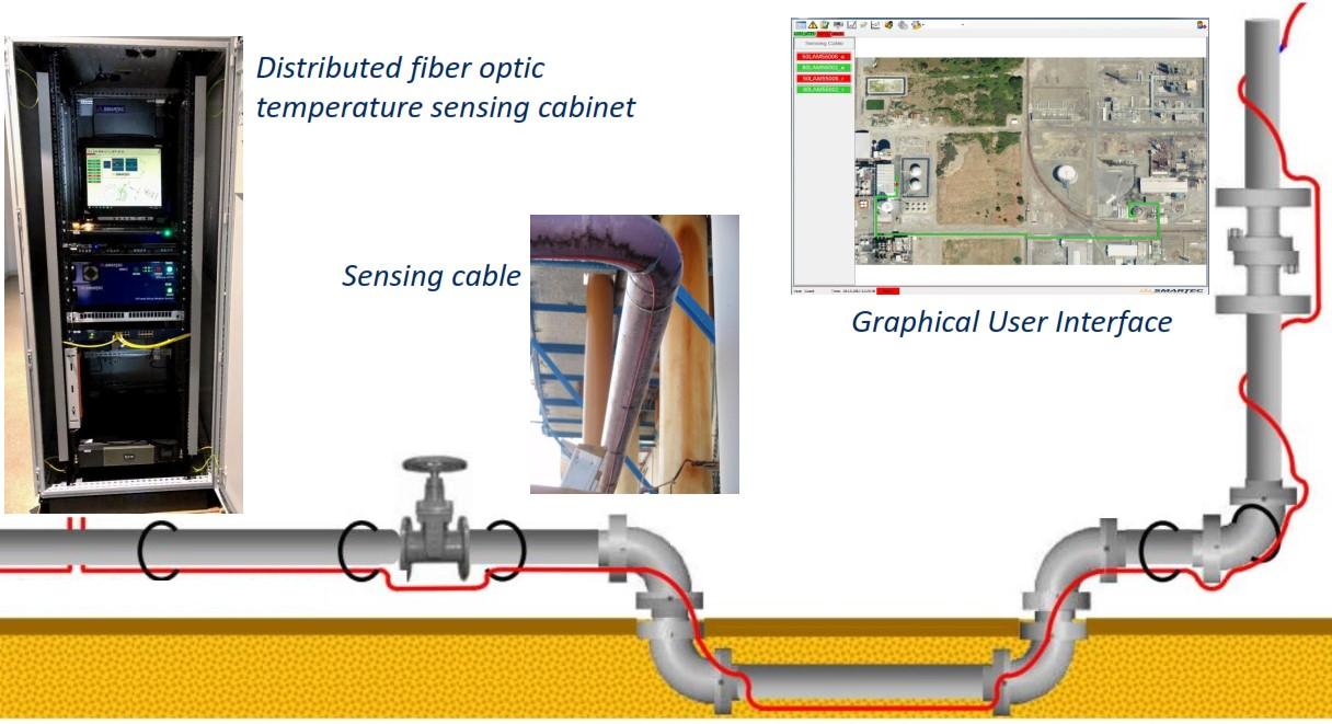 Distributed fiber optic temperature sensing detection system
